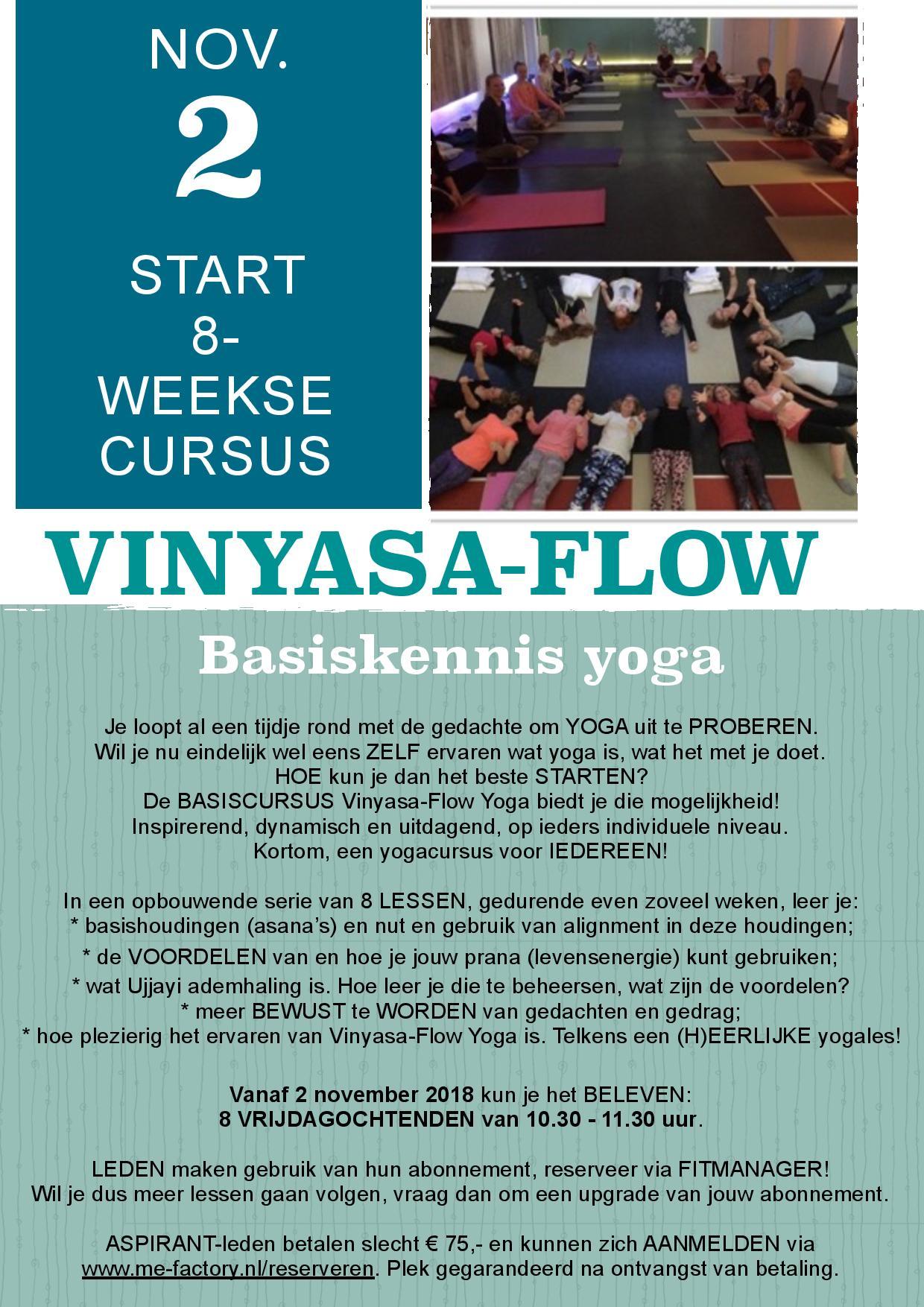 Cursus Vinyasa Flow vanaf 2 november